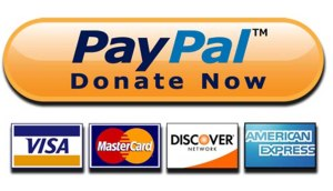 When-and-How-to-Add-Paypal-Donate-Button